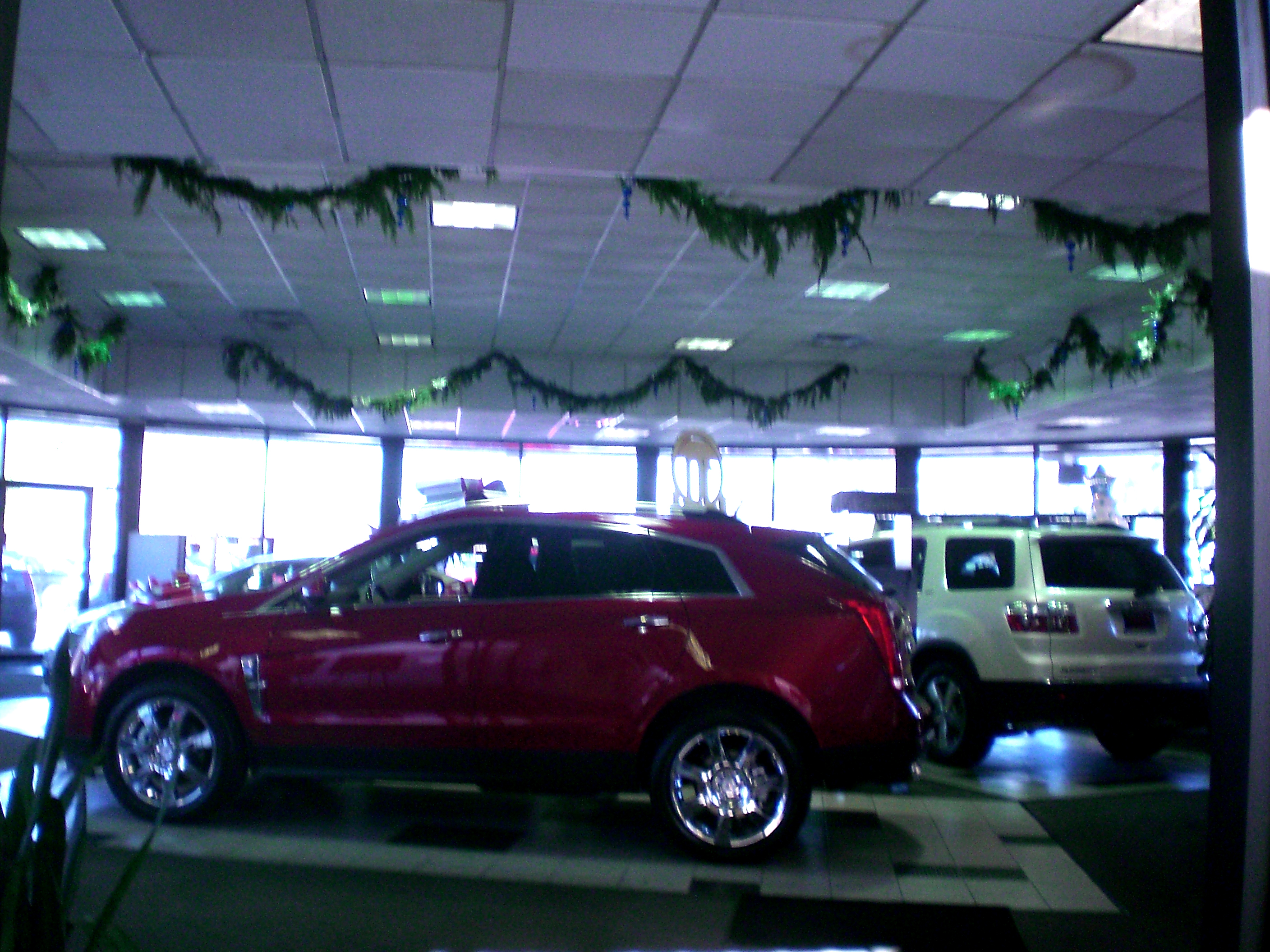 Ceiling Garlands Auto Dealer Showroom